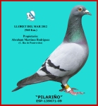 09-139671 ESP (Pilariño)