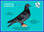 167330-12 LEAL
