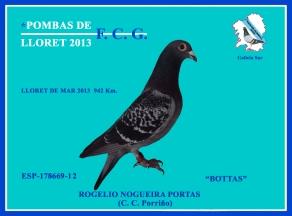 178669-12 Rogelio Nogueira