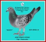 189181-2010 Rizón