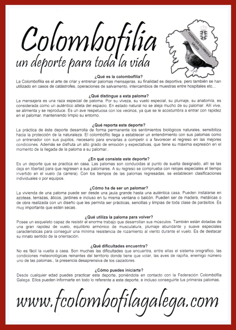 A-Sport-para-todo-el-vida (1)