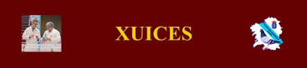 XUICES